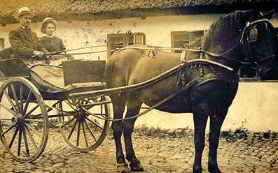 Johan vaever hest